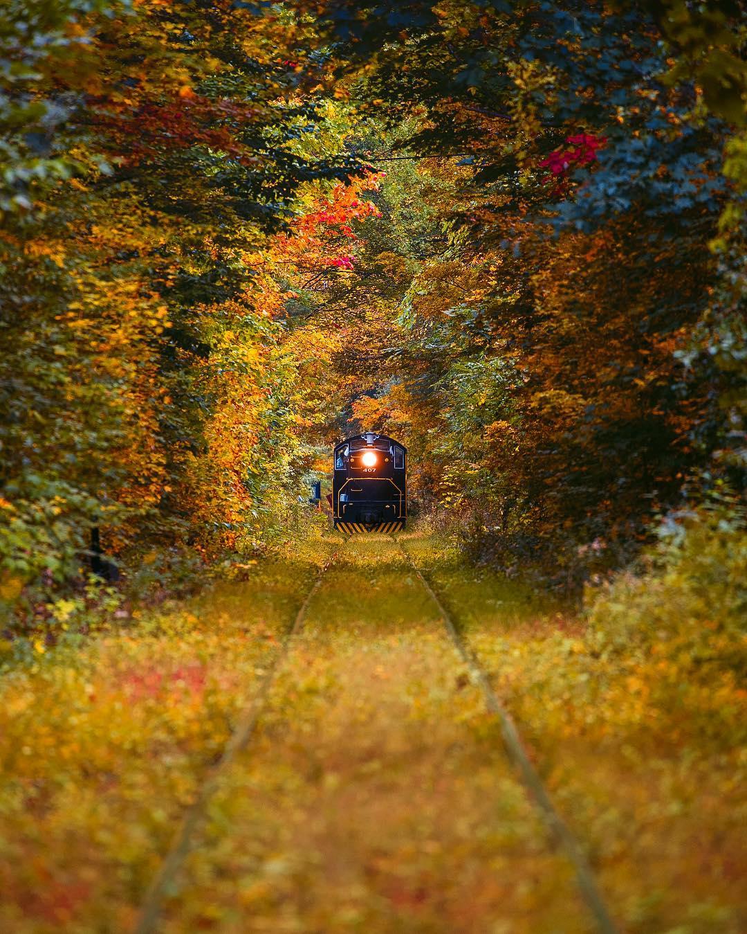 I LOVE NEW YORK Catskills Fall 2016 Social Campaign , The